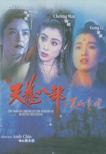 천룡팔부 포스터