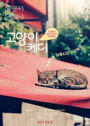 고양이 케디 포스터