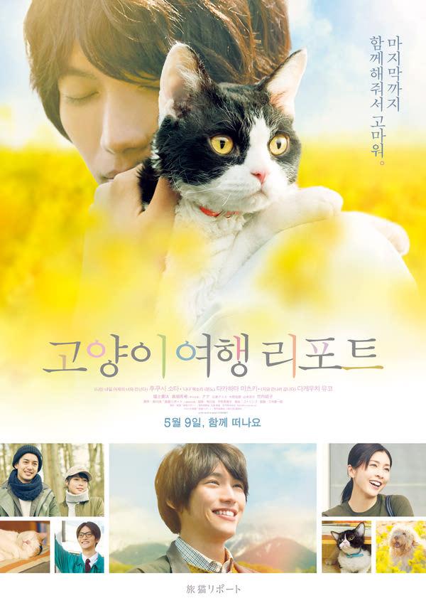고양이 여행 리포트 포스터 새창