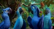 [리오2 ]아마존 정글을 노래하다 영상 - 리오2