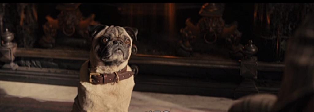 [킹스맨: 시크릿 에이전트]흥행보너스 강아지 영상