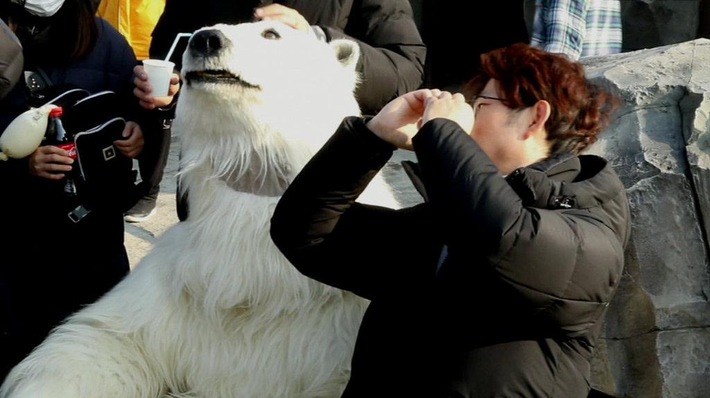 [해치지않아]동산파크 오픈 준비 영상