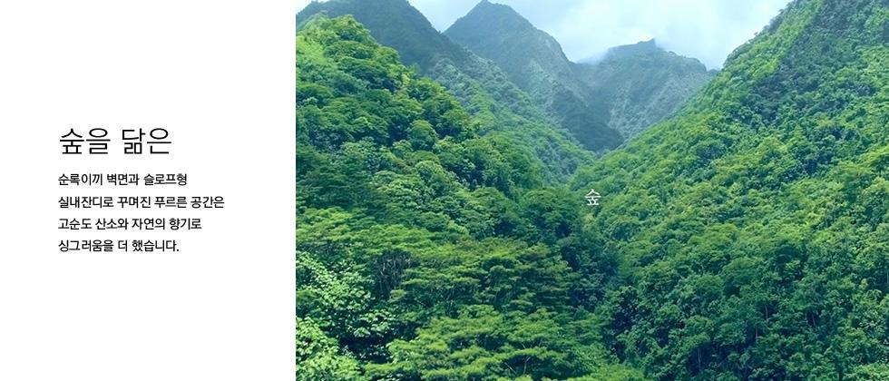 숲을 닮은 순록이끼 벽면과 슬로프형 실내잔디로 꾸며진 푸르른 공간은 고순도 산소와 자연의 향기로 싱그러움을 더 했습니다.