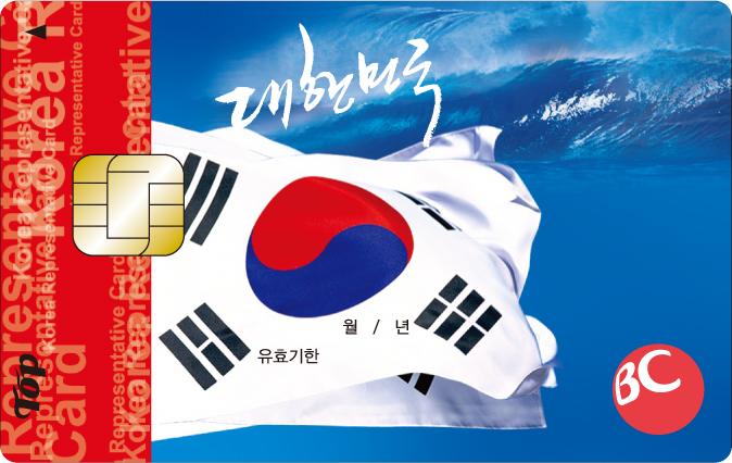 대한민국 (대,민) 카드
