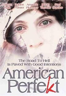 아메리칸 퍼펙트 포스터