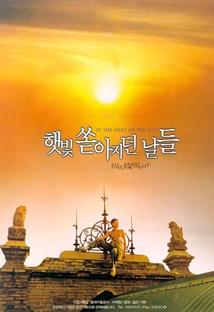 햇빛 쏟아지던 날들 포스터