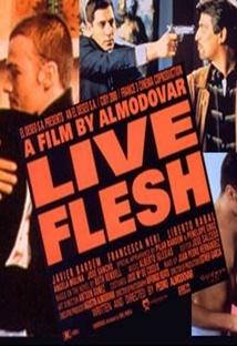 라이브 플래쉬 포스터